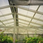 Hothouse built using plastic roofing products